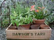 Dawson's Yard